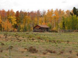 Warm Springs Ranch